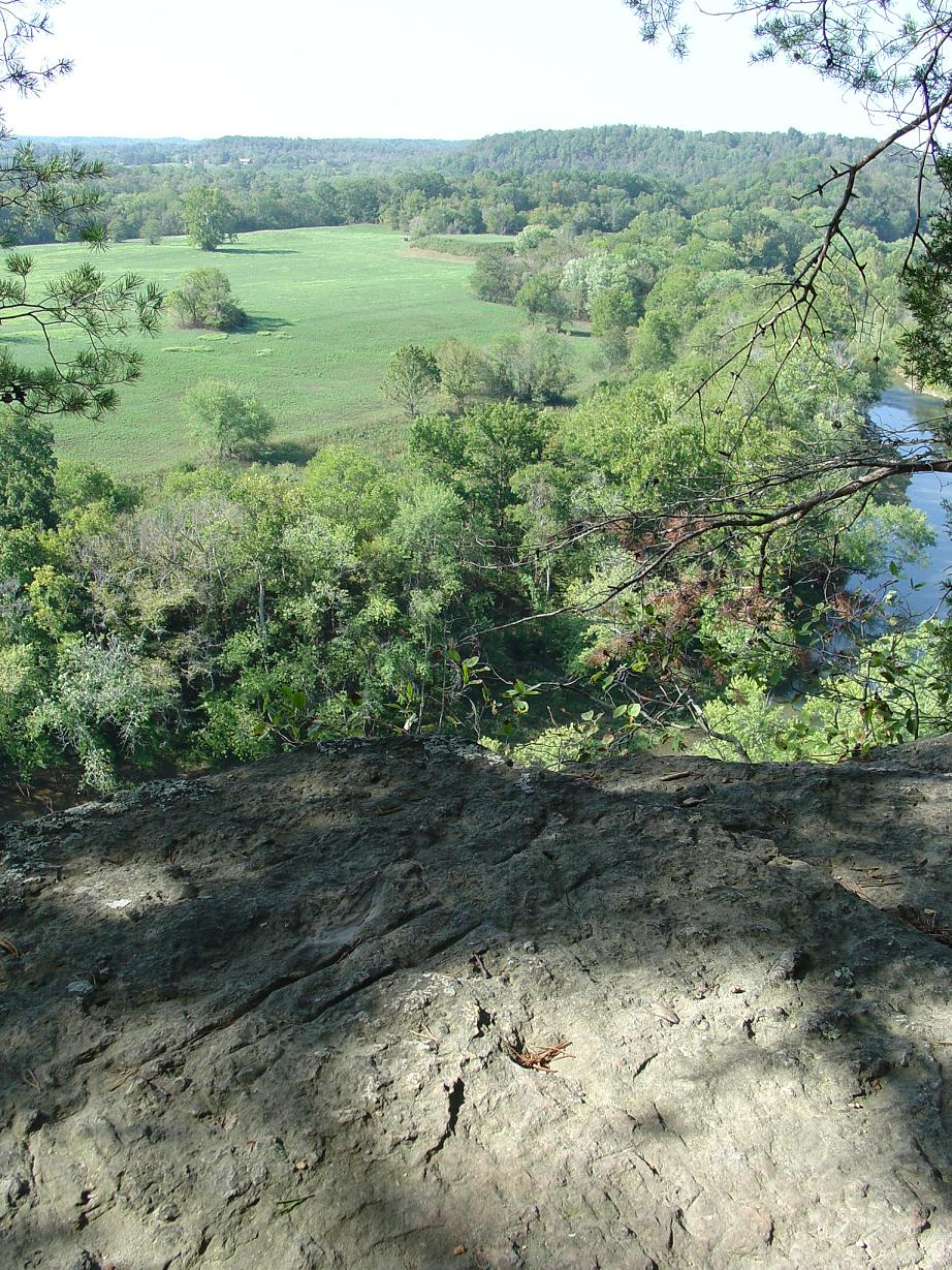 View of the Mound Bottom from Mace Bluff.