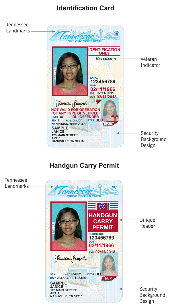 Driver Driver Card Driver Card License Examples Examples License License