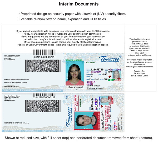 Examples Card Card Examples License Driver License Driver