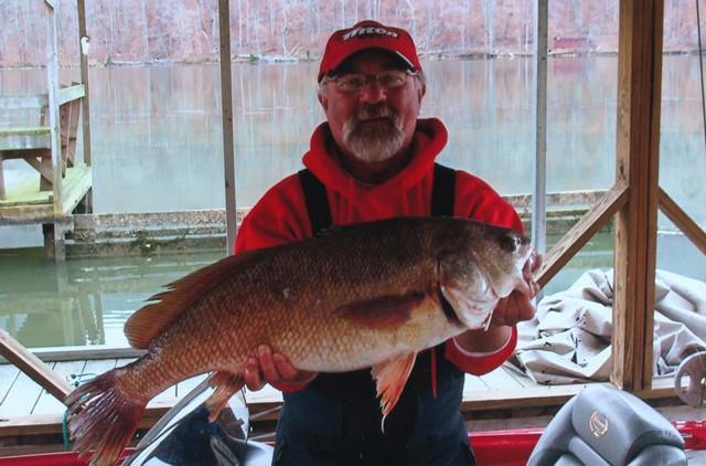 Joseph Willard 30.25 inch Freshwater Drum