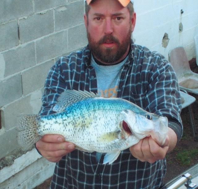 Todd Martin 16 inch White Crappie