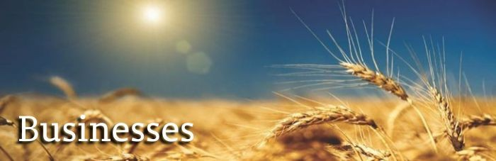 Businesses - Title graphic with wheat in background.