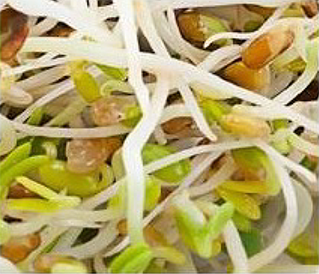 Produce Sprouts