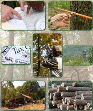 Consulting Forester Directory cover
