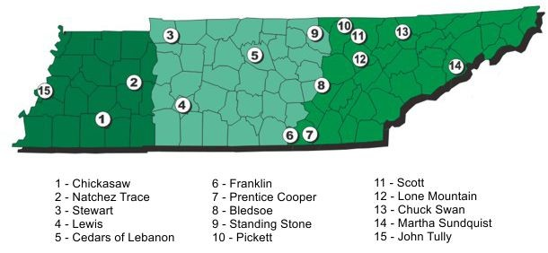 State Forests Tennessee Division Of Forestry