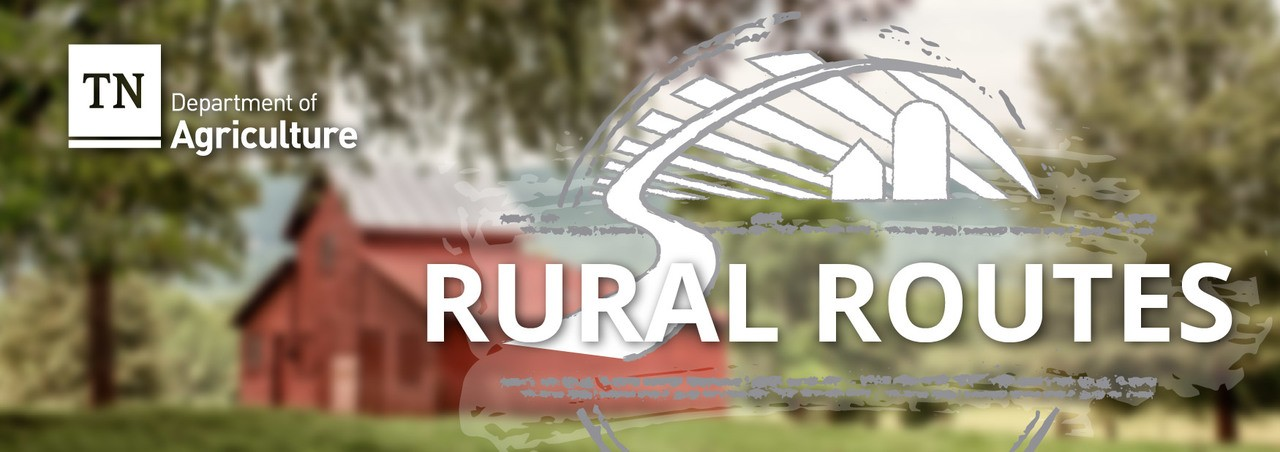 Rural Routes August 2018
