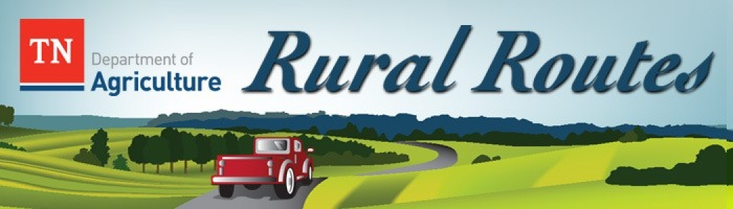 Rural Routes Header
