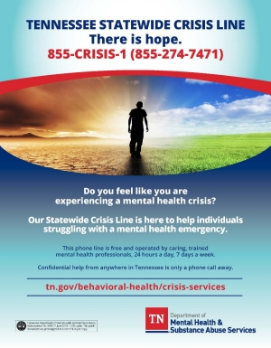 New Crisis Flyer July 2018