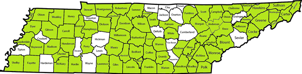 Alcoa City, Alcy Academy, Anderson County, Arlington Community Schools, Bartlett City, Bedford County, Benton County, Bledsoe County, Blount County, Bradley County, Brinkley Heights Urban Academy, Bristol City , Campbell County, Cannon County, Carroll County Consortium, Carter County, Cheatham County, Chester County, Circles of Success Learning Academy, Claiborne County, Coffee County, Collierville, Dayton City, Davidson County, Dickson County, Dyer County, Dyersburg City, Elizabethton City, Etowah City, Fayette County, Florence Crittenton Agency, Franklin County, FranklinSpecial School District (SSD), Free Will Baptist Ministries, Germantown Municipal Schools, Giles County, Greene County, Grundy County, Hamblen County, Hamilton County, Hancock County, Hardin County, Hawkins County, Haywood County, Henderson County, Henry County, Humboldt City, Humphreys County, Jefferson County, Johnson City, Johnson County, Kingsport City, Knox County, Lake County, Lauderdale County, Lawrence County, Lenoir City, Madison County, Manchester City, Marshall County, Maryville City, Maury County, McNairy County, Milan SSD, Millington, Monroe County, Montgomery County, Moore County, Morgan County, Murfreesboro City, Newport City, Oak Ridge City, Oneida SSD, Perry County, Polk County, Putnam County, Rhea County, Roane County, Robertson County, Rogersville City, Rutherford County, Sacred Heart School-Lawrenceburg, Saint Anne Catholic School, Scott County, Shelby County Schools, Smith County, Stewart County, Sullivan County, Sumner County, Sweetwater City, Trenton SSD, Trousdale County, Tullahoma City, Unicoi County, Union City, Union County, Warren County, Washington County, Weakley County, White County, Williamson County, Wilson County