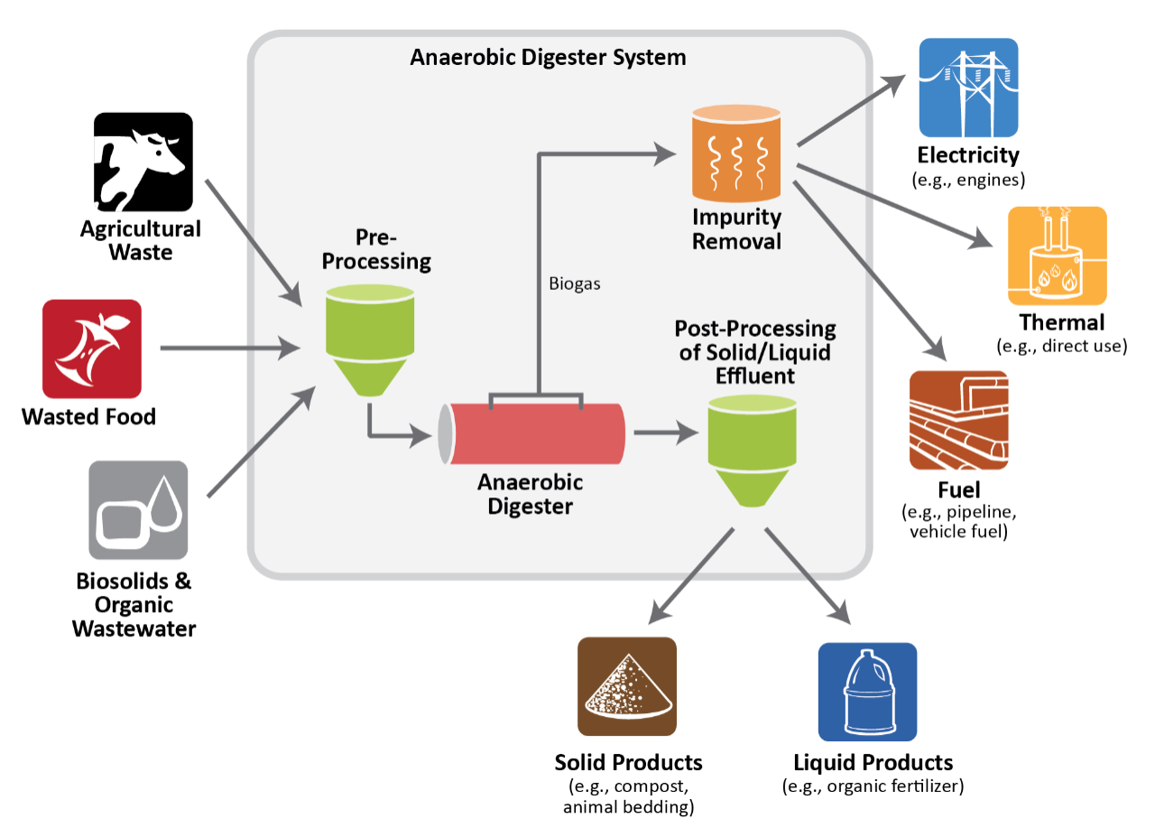 Anaerobic Digestion Some Biogas Plant Diagram Photos Digester System Components Image Shows Various Feedstocks Agricultural Waste Wasted Food Sewage