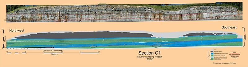 section-c1