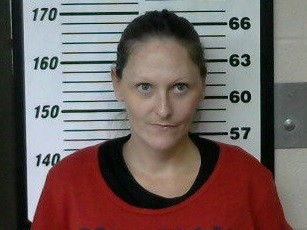 Obion Co  Woman Charged in Lake County Drug Sting