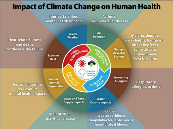 Impacts of Climate Change on Human Health graphic