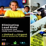 Eliminating Lead Risks cover page