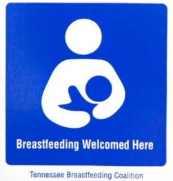 Breastfeeding Welcomed Here decal
