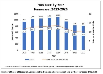 TN_NAS_Cases_1999to2010