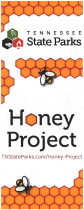 Honey Project Image