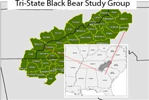 map of tri-state black bear study group