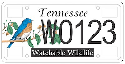 Wildlife license plate for Tennessee fishing license price